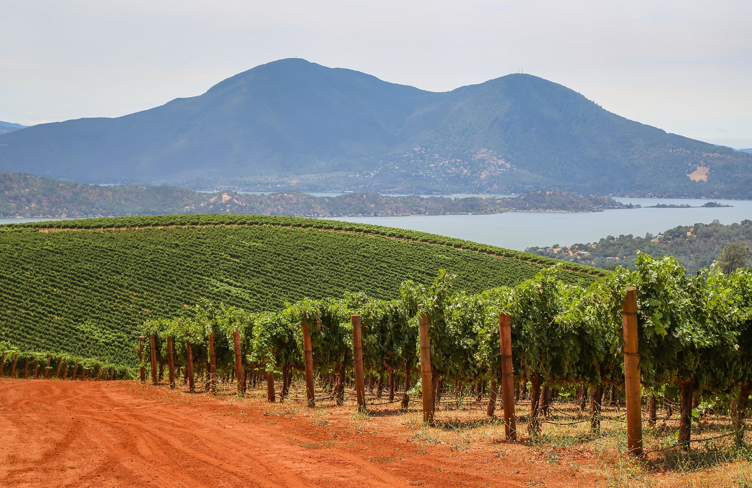 Red dirt, vineyards, lake, mountain